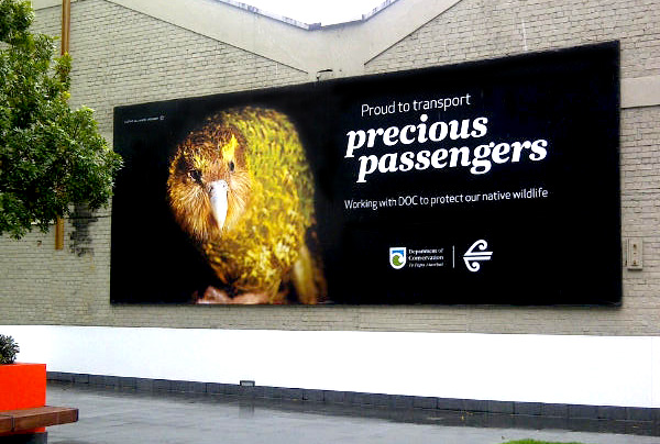 Kakapo-Air-NZ-billboard 2-600