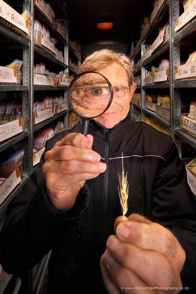 Dr Warren Williams, grasslands scientist, in Forage Germplasm coolstore. Story portrait by Rob Suisted