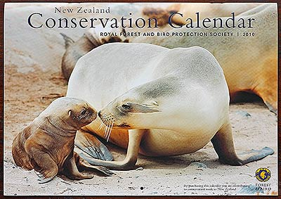 New Zealand Sea lion F&B Calendar 2010 by Rob Suisted