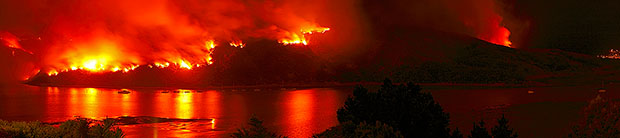 Titahi Bay Fire 21 Feb 2010, ©Rob Suisted, www.naturespic.com