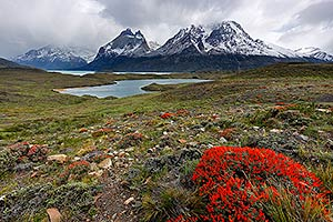 The Cordillera del Paine in Torres del Paine National Park, with Nordenskjöld Lake. Chilean Patagonia, Puerto Natales, Chile