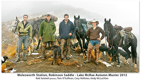 Molesworth Station Muster team on Robinson Saddle