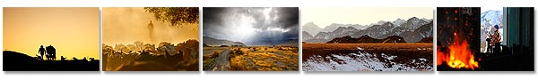 Molesworth Station canvas photo art prints