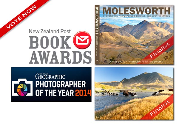 New Zealand Awards Finalist Rob Suisted