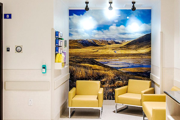 Rob Suisted mural in Auckland Hospital ADHB 1