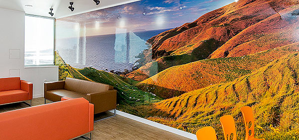 Rob Suisted murals in Auckland Hospital Haemotology and Bone Marrow transplant ward, ADHB