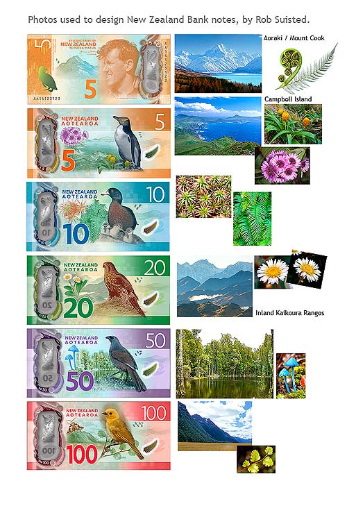 New Zealand bank notes redesigned from Rob Suisted photos