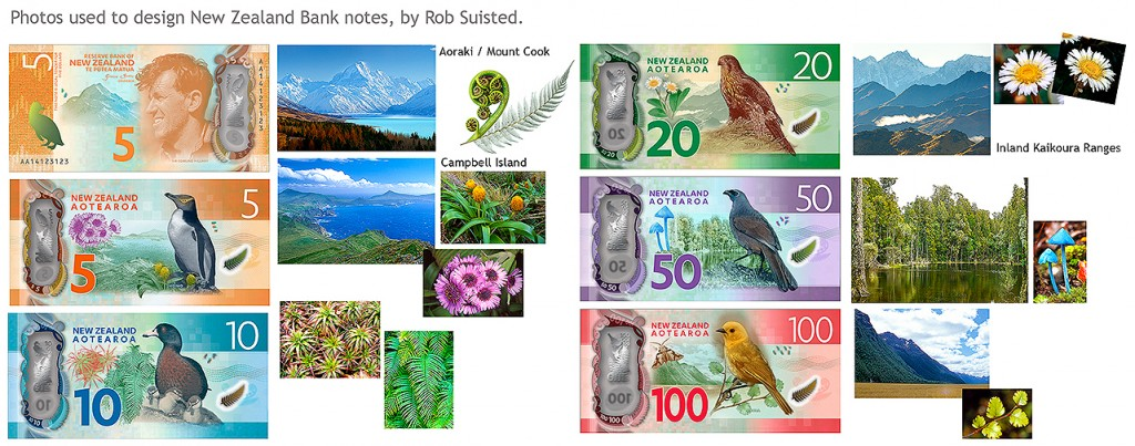 NZ bank notes, showing some of the photos by Rob Suisted