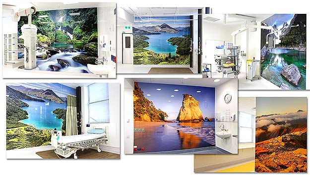 New Auckland Hospital murals, by Rob Suisted